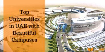 top universities in uae