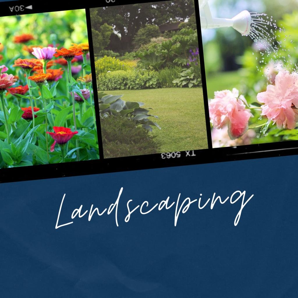 landscapping - xploredubai